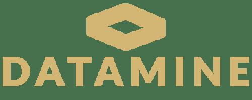 مجموعه نرمافزاری Datamine : مالکیت شرکت Datamine